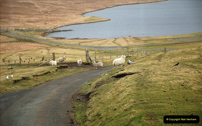 2019-03-27 Lerwick, Shetland Islands. (196) 196