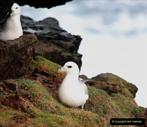 2019-03-27 Lerwick, Shetland Islands. (162) At Eshaness Lighthouse. 162