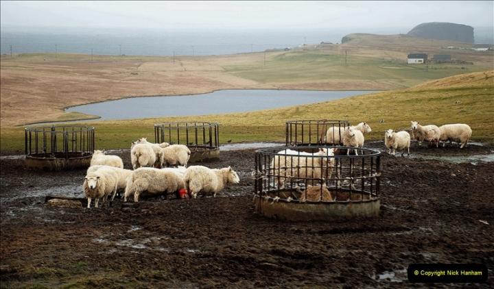 2019-03-27 Lerwick, Shetland Islands. (193) 193