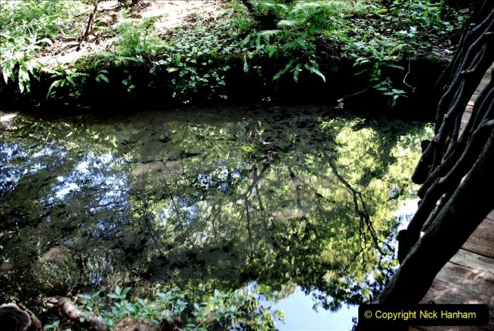 2019-09-17 Kilver Court Gardens, Shepton Mallet, Somerset. (22) 093