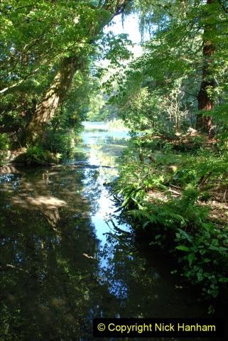 2019-09-17 Kilver Court Gardens, Shepton Mallet, Somerset. (23) 094