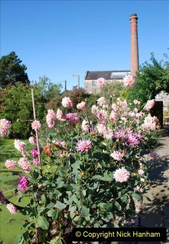 2019-09-17 Kilver Court Gardens, Shepton Mallet, Somerset. (5) 076