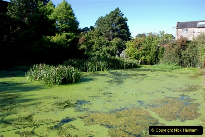 2019-09-17 Kilver Court Gardens, Shepton Mallet, Somerset. (7) 078