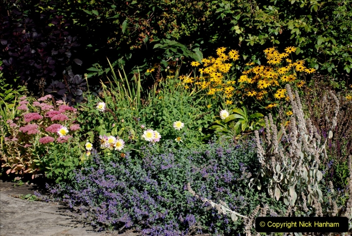 2019-09-17 Kilver Court Gardens, Shepton Mallet, Somerset. (73) 144