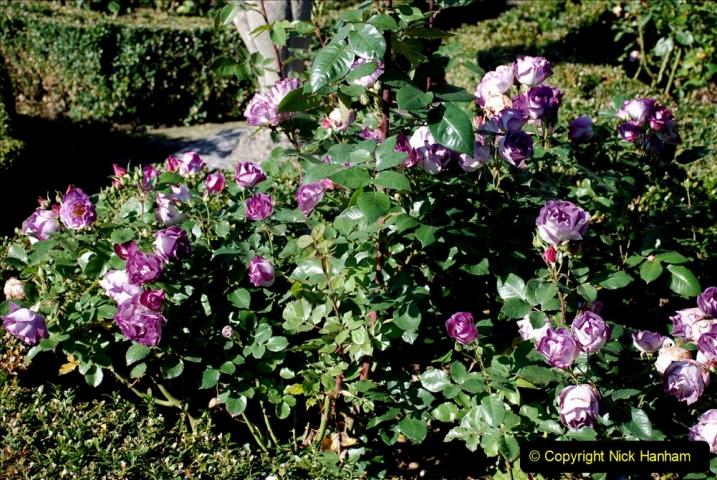 2019-09-17 Kilver Court Gardens, Shepton Mallet, Somerset. (74) 145