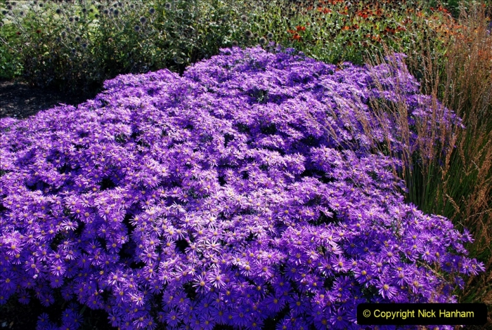 2019-09-17 The Hauser & Wirth Garden at Bruton, Somerset. (108) 180