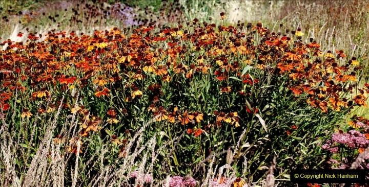 2019-09-17 The Hauser & Wirth Garden at Bruton, Somerset. (112) 184