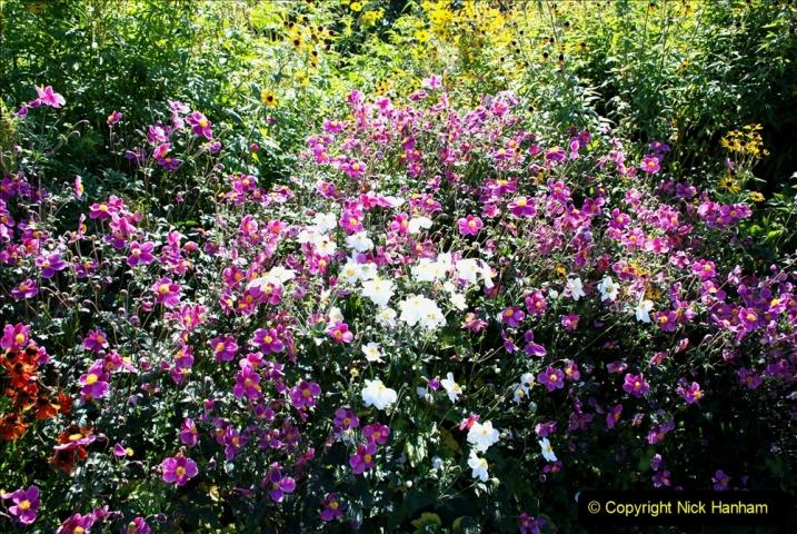 2019-09-17 The Hauser & Wirth Garden at Bruton, Somerset. (124) 196