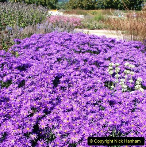 2019-09-17 The Hauser & Wirth Garden at Bruton, Somerset. (125) 197