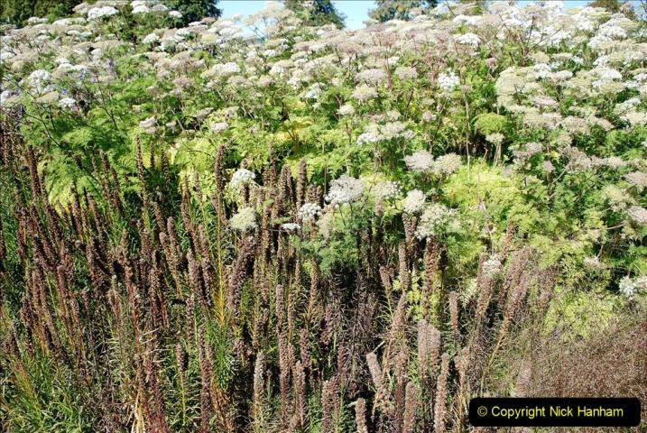 2019-09-17 The Hauser & Wirth Garden at Bruton, Somerset. (127) 199