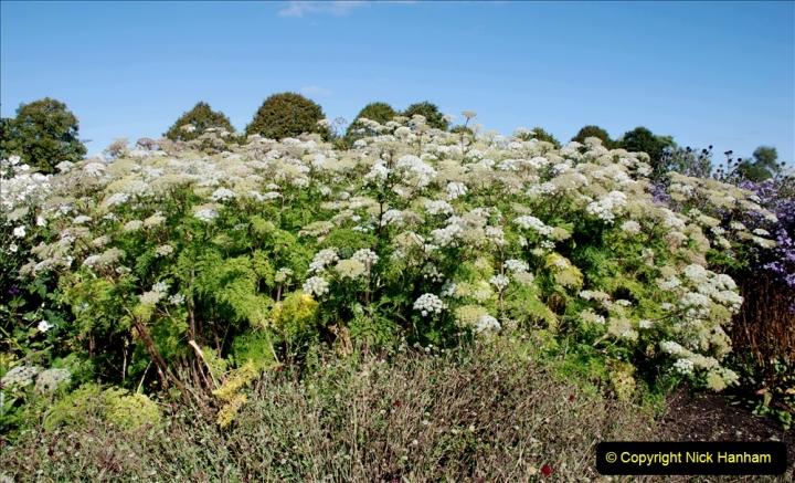 2019-09-17 The Hauser & Wirth Garden at Bruton, Somerset. (128) 200