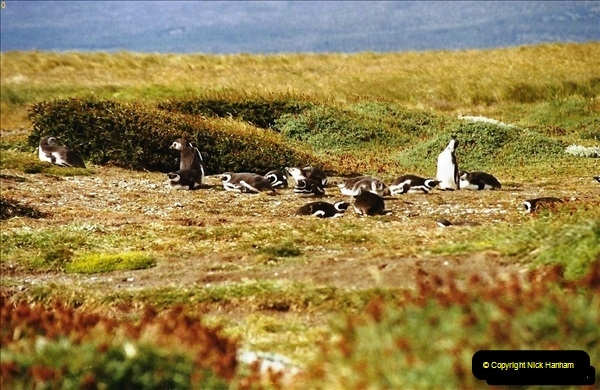 South America & The Falkland Islands.  2002 - 2003 (91)091