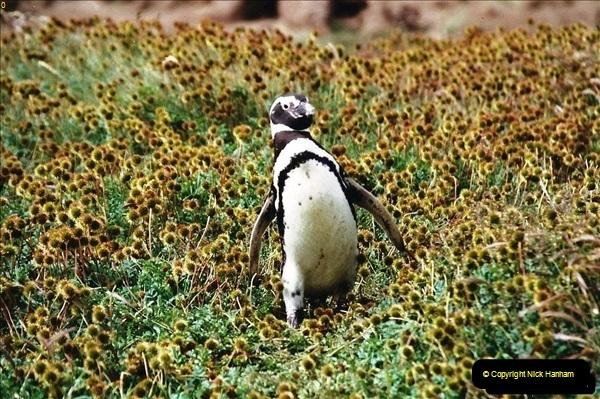 South America & The Falkland Islands.  2002 - 2003 (96)096