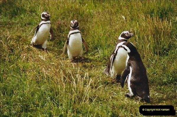 South America & The Falkland Islands.  2002 - 2003 (99)099