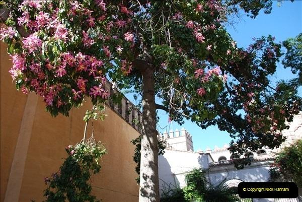 2007-10-11 Seville (& El Alcacar) Spain.  (35)035