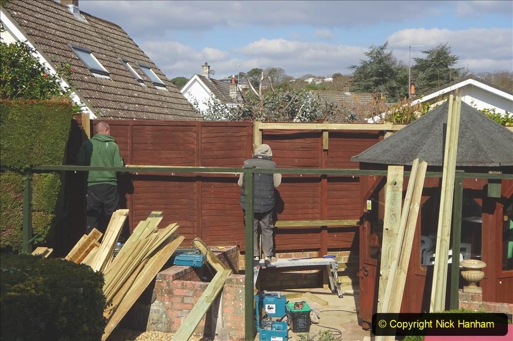 2021-03-06 New fencing for rear garden. Garden makeover. (73) 073