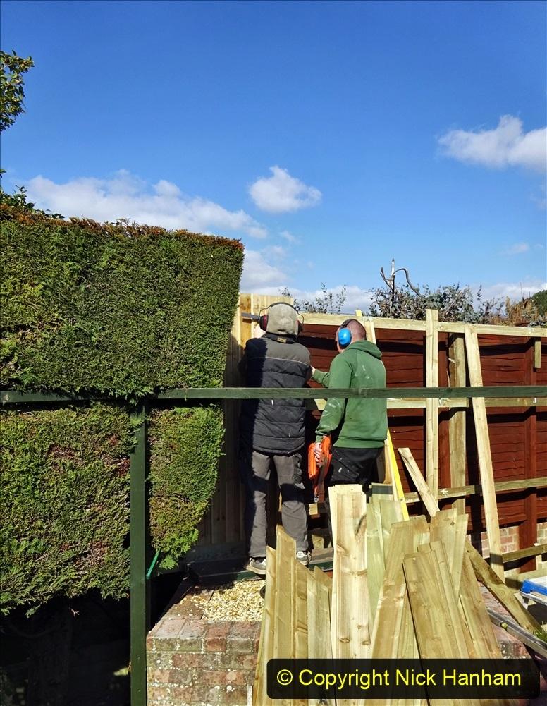 2021-03-06 New fencing for rear garden. Garden makeover. (74) 074
