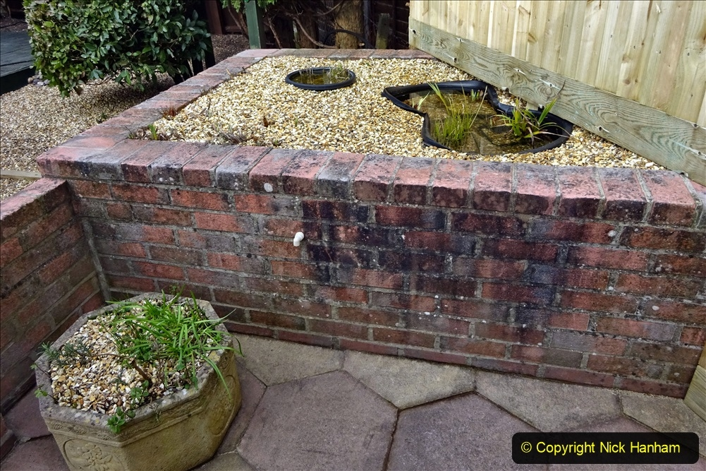 2021-03-07 New pond for rear garden. Garden makeover. (83) 083