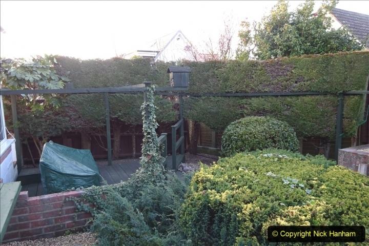 2021-02-20 Start of back garden makeover. (10)  010