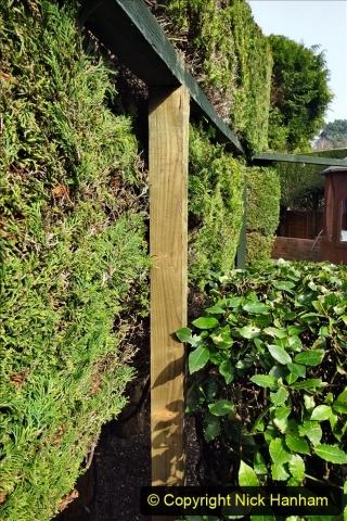 2021-03-03 Post for new fence. Garden makeover. (56) 056