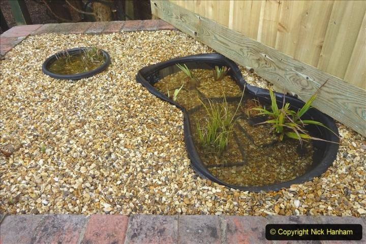 2021-03-07 New pond for rear garden. Garden makeover. (85) 085