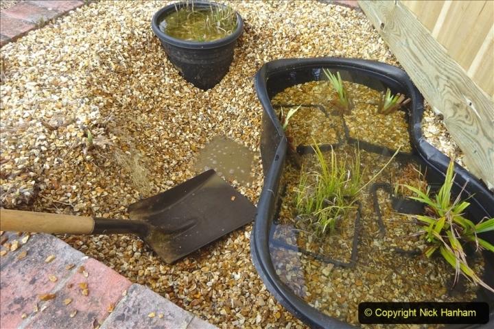 2021-03-07 New pond for rear garden. Garden makeover. (86) 086