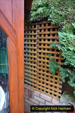 2021-03-11 Pieces of trellis used to block gap in hedge. Garden makeover. (108) 108