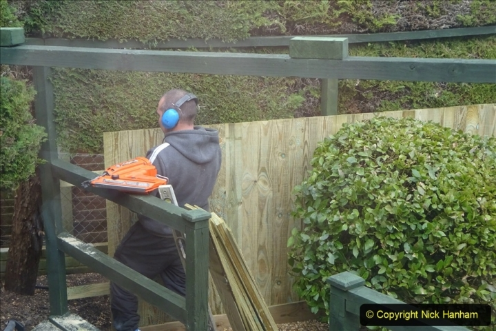 2021-03-20 More fencing and path slab pointing. Garden makeover.  (128) 128