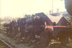 1981-01-01 to 1981-06-12 Progress on the SR.  (2)0081
