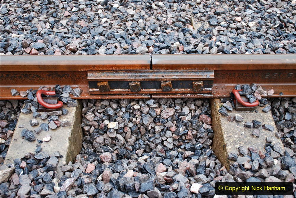 2020-01-31 SR Miscellany. (18) Cowpat Crossing to just past Dickers Crossing lineside tidy work. 018