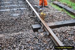 2020-01-31 SR Miscellany. (49) Corfe Castle School Crossing spot sleeper replacement. 049