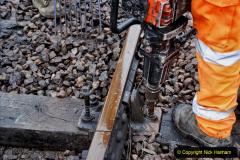 2020-01-31 SR Miscellany. (60) Corfe Castle School Crossing spot sleeper replacement. 060