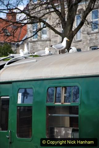 2020-03-16 The Swanage Railway. (57) 057
