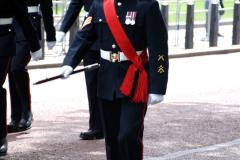 2019-05-12 Touring Central London Day 1. (50) Royal Marines Vetrans Parade. 050