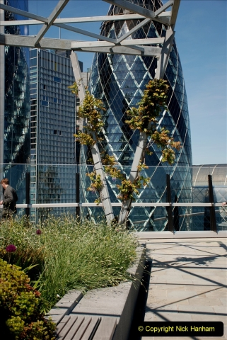 2019-05-13 Touring Central London. (169) The Garden at 120 Fenchurch Street on Floor 15. 169