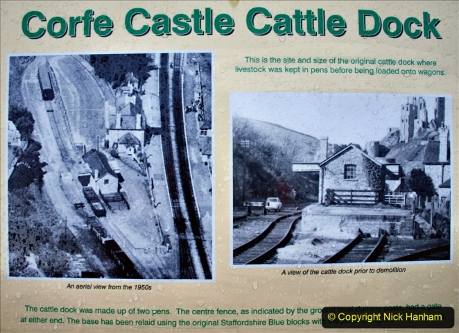 2020-01-17 Track renewal Cowpat Crossing to just past Dickers Crossing. (5) Corfe Castle. 5