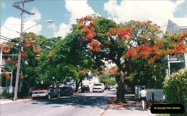 1991-07-16 to 19 The Keyes & Key West, Florida.  (15)027