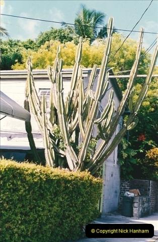 1991-07-16 to 19 The Keyes & Key West, Florida.  (35)047