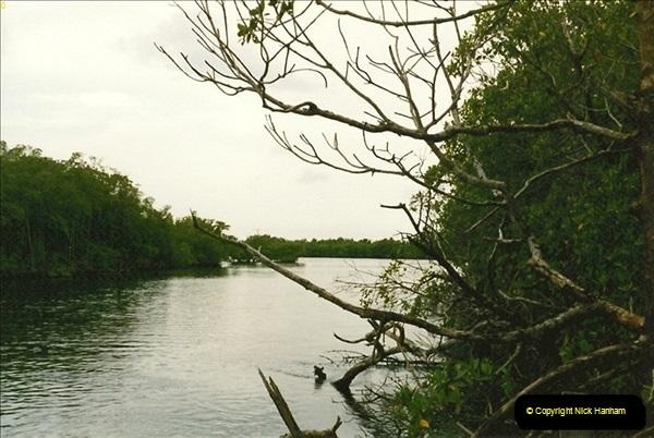 1991-07-20 The Everglades, Florida.  (9)076