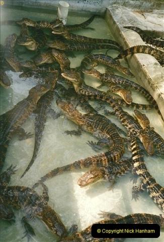 1991-07-21 Gator Jungle, Plant City, Florida.  (17)094