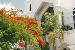 1991-07-16 to 19 The Keyes & Key West, Florida.  (3)015