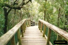 1991-07-20 The Everglades, Florida.  (2)069