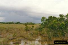 1991-07-20 The Everglades, Florida.  (4)071
