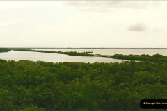 1991-07-20 The Everglades, Florida.  (7)074