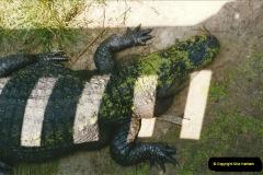 1991-07-21 Gator Jungle, Plant City, Florida.  (13)090