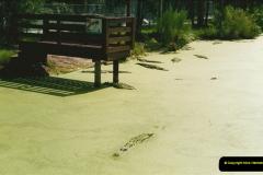 1991-07-21 Gator Jungle, Plant City, Florida.  (7)084