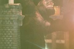 1991-07-21 Universal Studios, Orlando, Florida.  (22)118