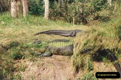 1991-11-24 Gator Jungle, Plant City, Florida.  (13)152