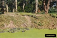 1991-11-24 Gator Jungle, Plant City, Florida.  (14)153