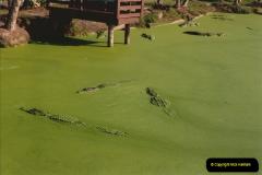 1991-11-24 Gator Jungle, Plant City, Florida.  (7)146